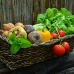 脳は肉が大好物、腸は野菜 ( 食物繊維 ) が大好物