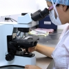 大腸内視鏡検査で異常を見つける